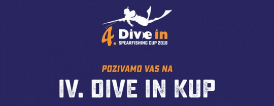 Dive In Fest 2016.